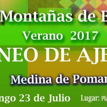 XI Torneo de ajedrez Montañas de Burgos – Verano de 2017 ( 23-07-17 )